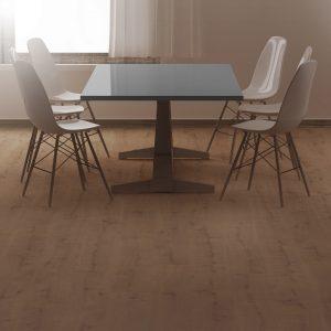 Floorpan Nova Parke Modelleri